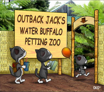 Outback Jack's